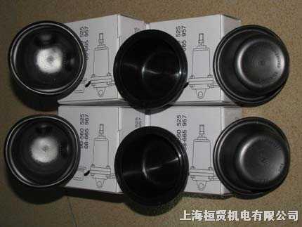复盛伺服气缸膜片