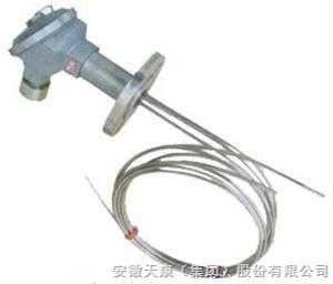 WZPK2-246-WZPK2-246雙支防爆鎧裝熱電阻