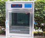 电子低温干燥箱