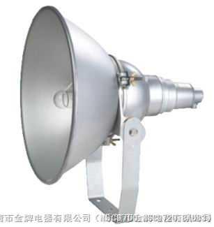 ZY8300◆防震型投光灯◆ ZY8310