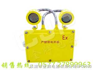 BXW6229长寿防爆应急工作灯