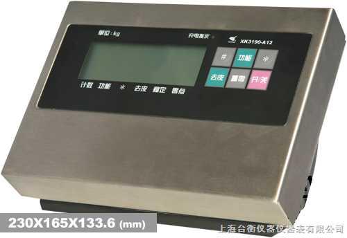 不锈钢电子仪表(液晶显示)