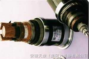 BPGVFP3变频电力电缆
