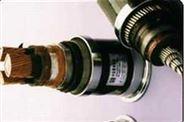 变频器用电缆