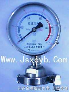 卫生型卡箍隔膜压力表