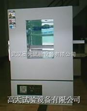 GT-FTK-72防爆箱,防爆烤箱