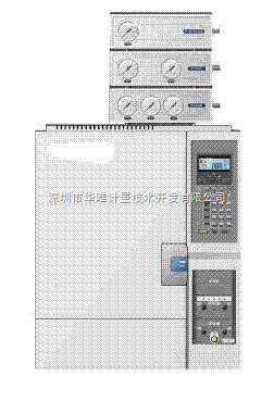 GC-20O,HS分析仪,金属元素分析仪,气相色谱仪