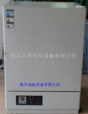 GT-TK-137電熱恒溫幹燥箱
