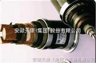 300/500V及450/750V以下聚氯乙烯绝缘(屏蔽)电缆(电线)