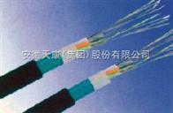 GYTY53GYTY53光缆