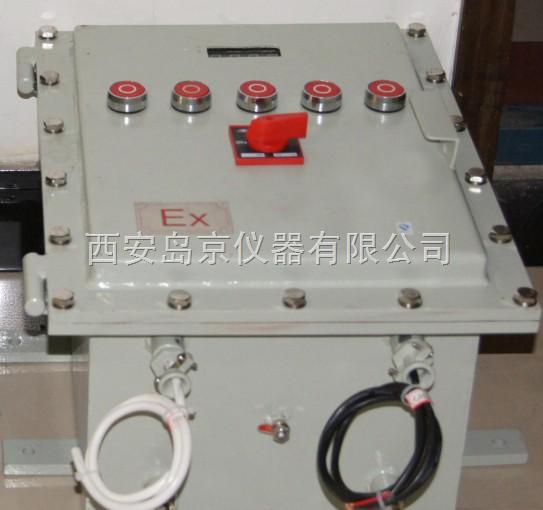 Analy2100在线防爆氧分析仪