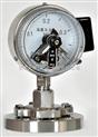 YTU-100S/Z 耐硫耐震压力表YTU-150S/Z