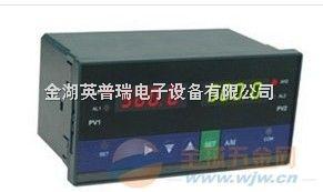 YWP-D823智能双回路测控仪