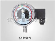 SF6氣體壓力(密度)表