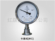 耐震型卫生型隔膜压力表