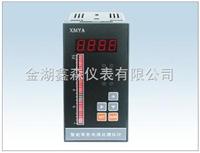 XS系列智能电接点液位显示控制仪