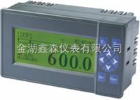 XS-100YJ系列液晶显示调节仪