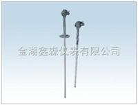 XS系列耐腐型热电偶/阻