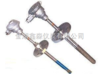 XS系列耐磨热电阻
