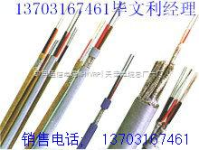 供应ZRC-HYA 10*2*0.6 阻燃通信电缆 价格