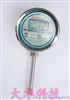 DHW就地温度显示仪