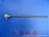 WZPF-430防腐热电阻