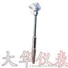 DH-WZP热套热电阻