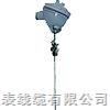WZPK-196/WZPK2-196/WREK-296/WZPK2-296/WRNK-49铠装热电偶WZPK-196/WZPK2-196/WREK-296/WZPK2-296/WRNK-49