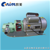 WCB微型�X�油泵
