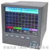 SWP-TSRSWP彩色无纸记录仪