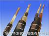 70℃电机绕组引接软电缆(电线)
