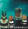 氟塑料耐高温电力电缆ZR192-FF46-22/ZR-F46-22(FV22)/YGC-F46-22