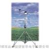 H21-001小型便携式自动气象站