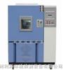 DHS-100恒温恒试验试验箱