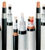 DJYP2V22计算机电缆