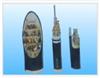 KFVRP22氟塑料屏蔽控制电缆