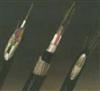 光缆GYSTA53系列