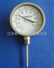 WSS系列2双金属温度计
