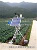 RYQ-2农业生态监测田间小气候观测仪(太阳能供电)