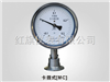 YTP系列卫生型隔膜压力表